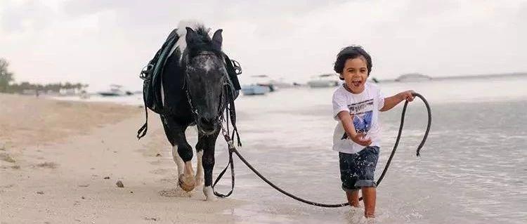 孩子学骑马的问题