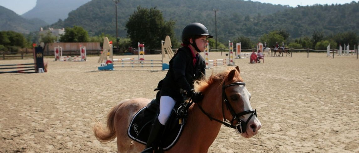 马与人的和谐相处