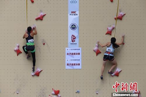 原料图:攀岩比赛。中新社记者 瞿宏伦 摄