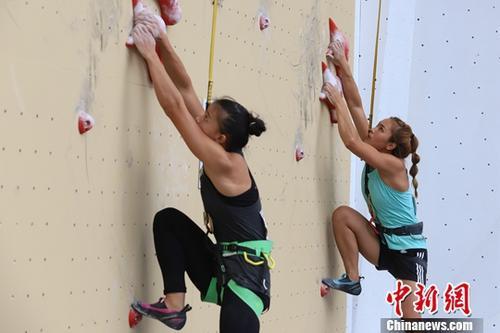 巴黎奥运攀岩有看设4金,中国教练集体。程度亟待升迁。