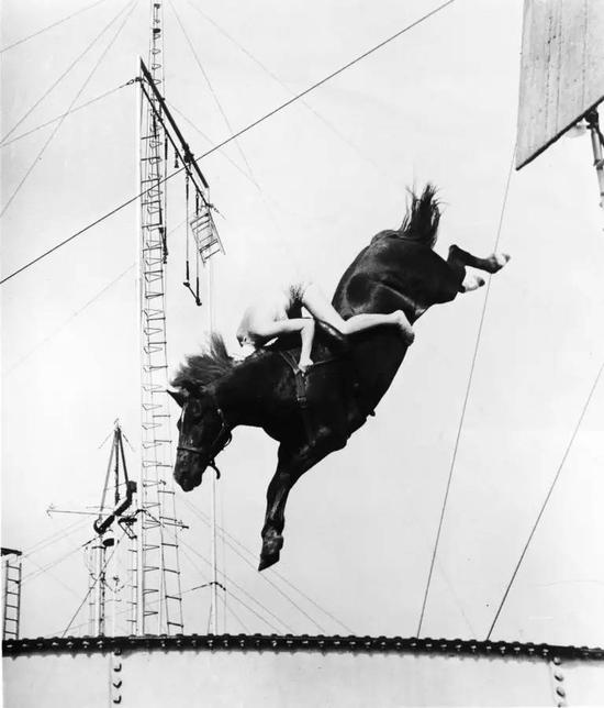 美女骑马跳水比赛逃离伊甸园空手道图片