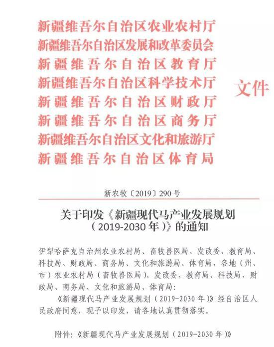新疆现代马产业发展规划通知文件