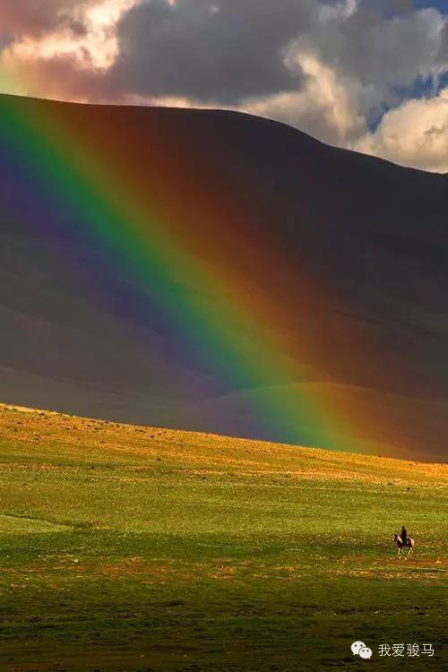 草原上的蒙古人