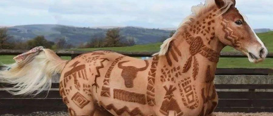 """马的""""纹身"""""""