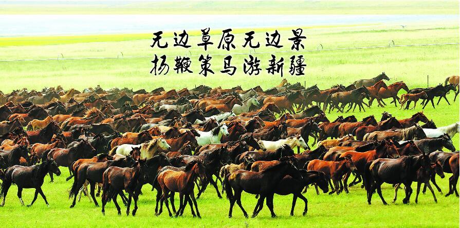 """在昭苏草原上举行的""""万马奔腾""""表演每年都是中国新疆伊犁天马国际旅游节上最吸引眼球的压轴戏(资料图片)"""