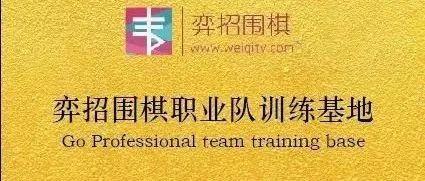 弈招围棋职业预备队成立 世界冠军领衔导师团