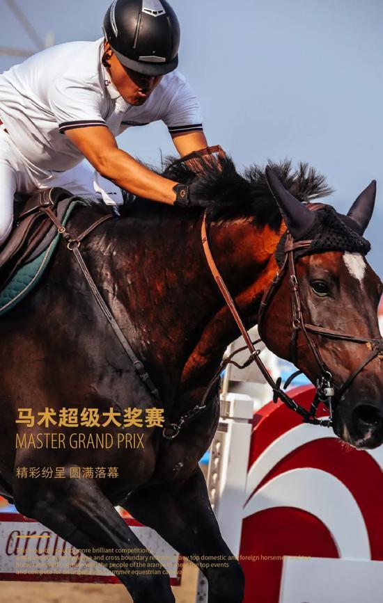 马术超级大奖赛落幕   优雅骑士光芒闪耀阿那亚