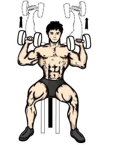 动作三:俯身哑铃单臂侧平举