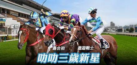 【香港赛马资讯】22日游客免费进沙田马场观赏赛事