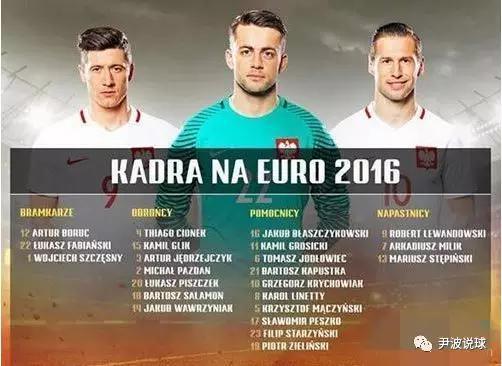(2016年欧洲杯波兰队大名单)