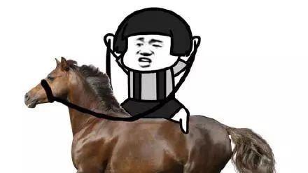 马呼吸编制的解剖与功能