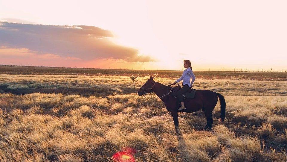 骑马到底是怎样的一种运动?
