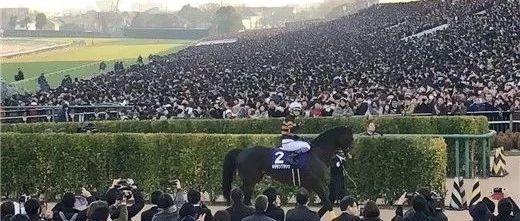 """2017有马纪念赛冠军""""北部玄驹"""",图片来自推特网。"""