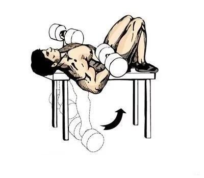 动作五:哑铃集中式弯举