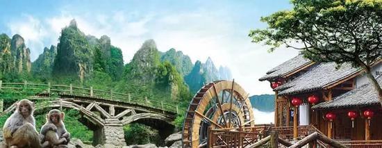 衢江紫微山国家森林公园