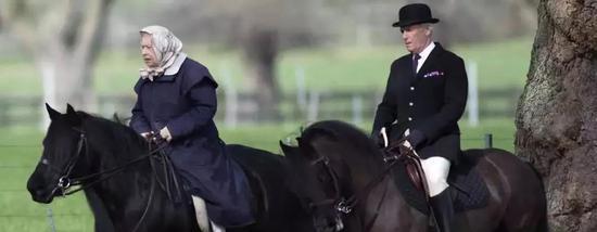 伊丽莎白女王骑马照