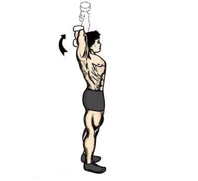 动作二:哑铃过顶臂屈伸