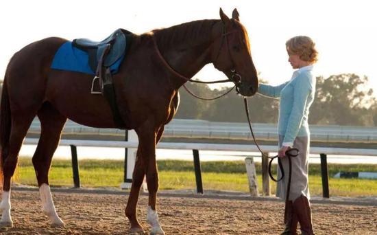 被谱成歌,拍成电影,这是一匹怎样的传奇赛马?
