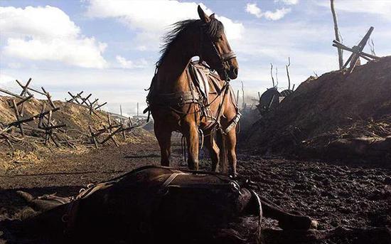 《War Horse》(战马)