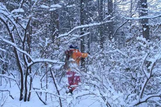 冬天辨认路迹的难度更大一些。图/北陵-顺子