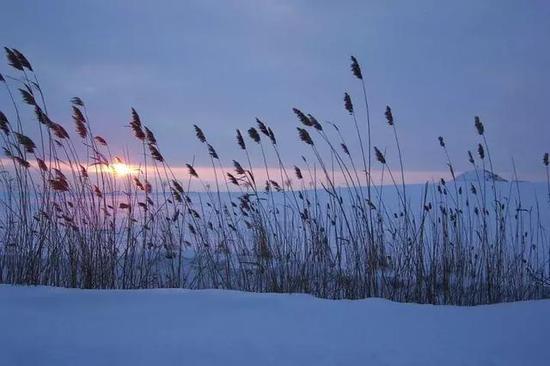 冬天,天黑的更早一些。图/Schak