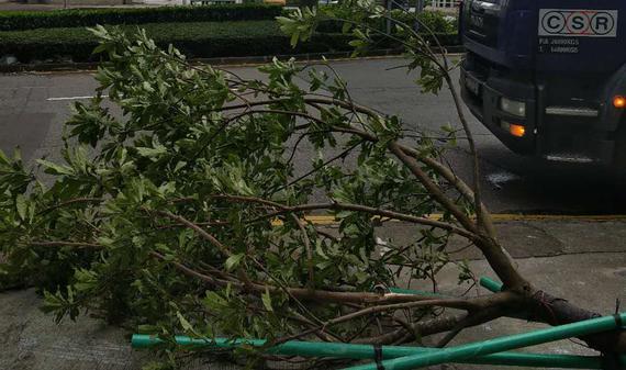 台风过后权健亚冠比赛将如期进行