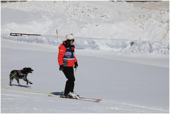 令人羡慕的61老滑手安迪-温泽尔