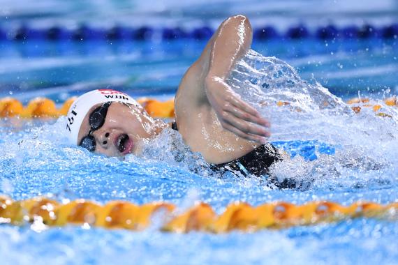 众游泳国手闪耀二青会泳池 离奥运A标仍有差距