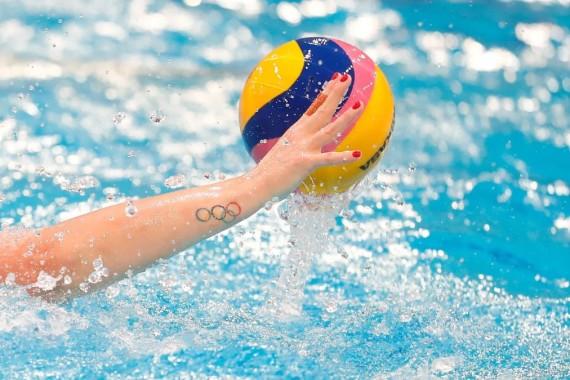 国际泳联图片