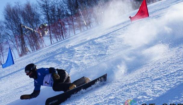 单板滑雪障碍追逐世界杯:黑默林、莫约利获总冠军