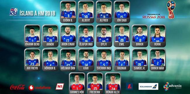 冰岛队公布世界杯名单