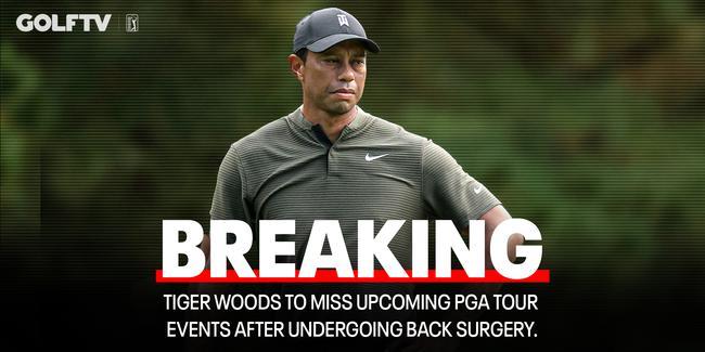 伍兹接受第五次背部手术 将缺席未来多场美巡赛