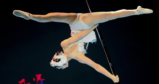 第二届中国钢管舞公开赛举行