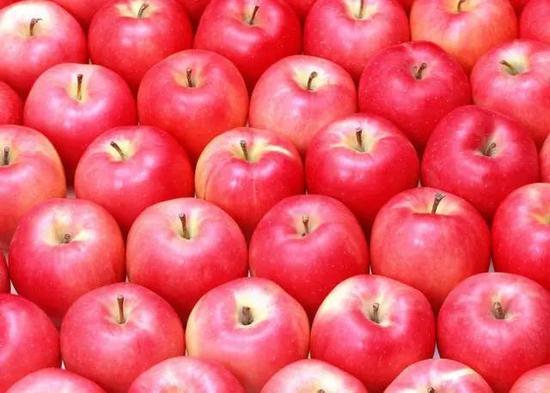 苹果钩针图解步骤图解
