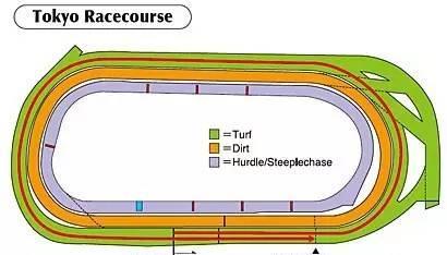 ▲图/Horse Racing in Japan