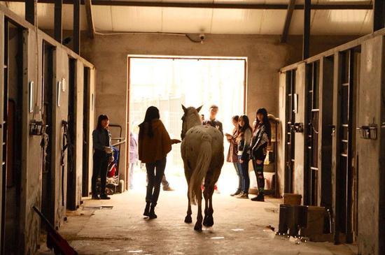 马工体验活动