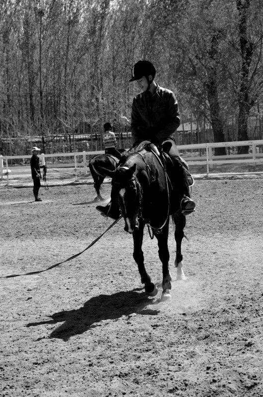 骑马体验活动