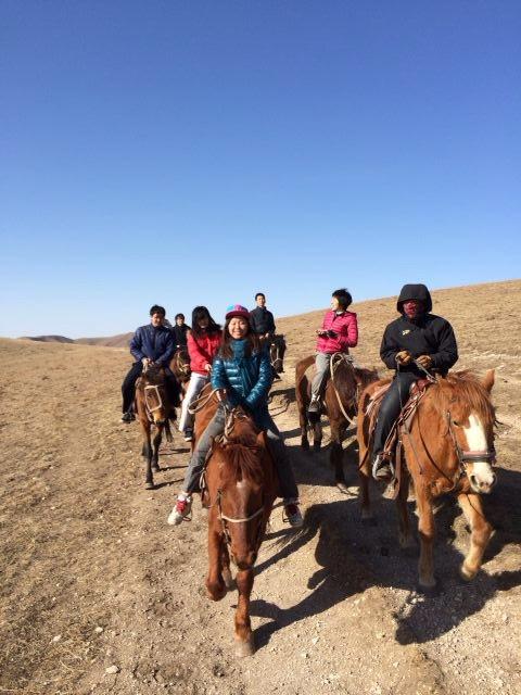 沙原骑马活动
