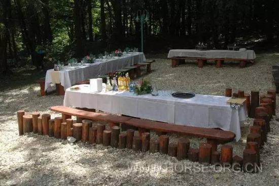 体验欧洲风味的森林野餐
