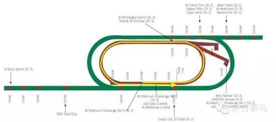 ▲图/Meydan Racecourse