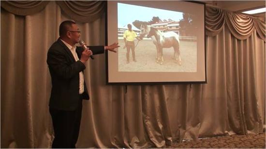 夏阳  《高端运动马匹定向培育&现代马文化艺术发展》