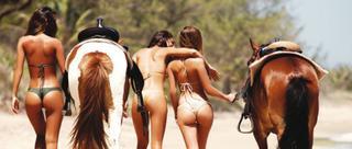 比基尼美女海滩骑马撩人无限
