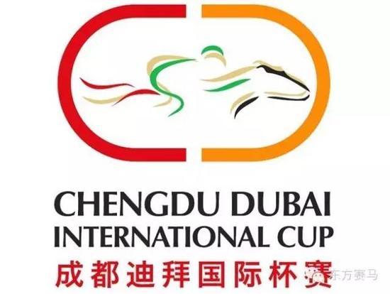 ▲图/成都迪拜国际杯