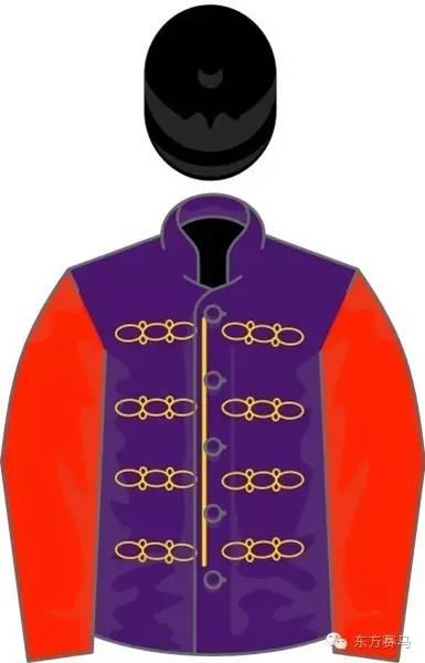 ▲图/Wikipedia,女王的彩衣