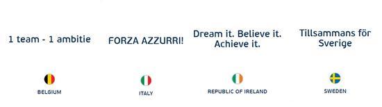 E组:比利时,意大利,爱尔兰,瑞典