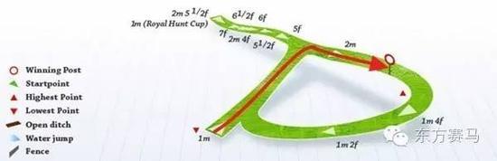 ▲图/Racing Post