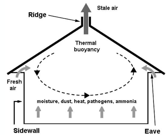 马房能否自然通风系统取决于建筑结构
