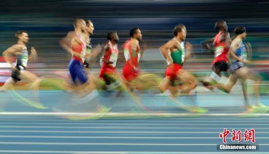 资料图:当地时间8月18日,2016里约奥运会男子1500米半决赛在里约奥林匹克体育场鸣枪。中新网记者 盛佳鹏 摄