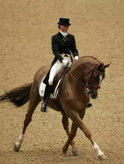 马背女王巾帼不让须眉 骑马的女人更加坚强自信图片