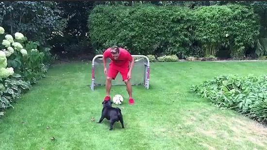 厄齐尔和狗踢球
